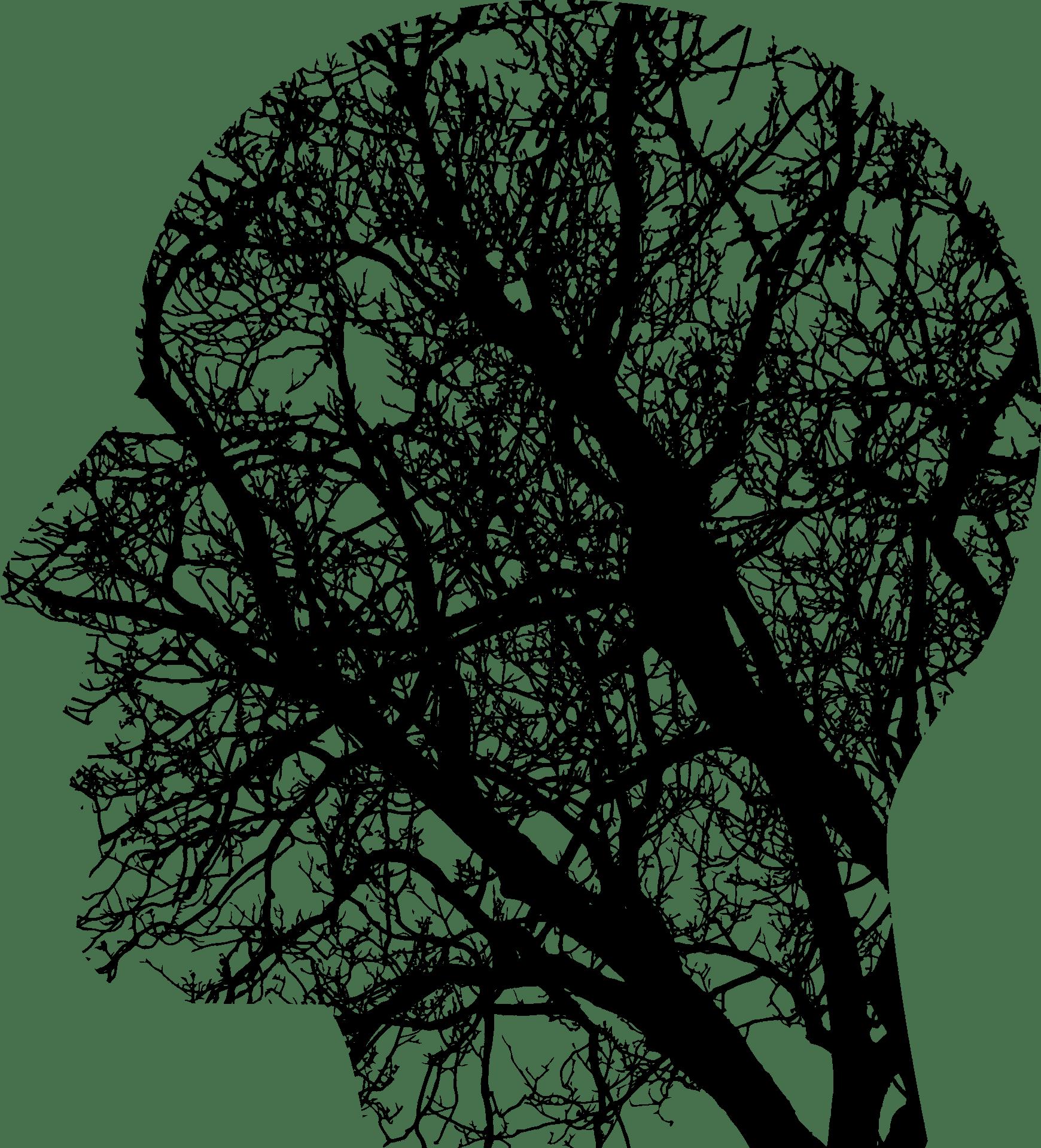 Kopf, Gehirn, Netz, Gedanken