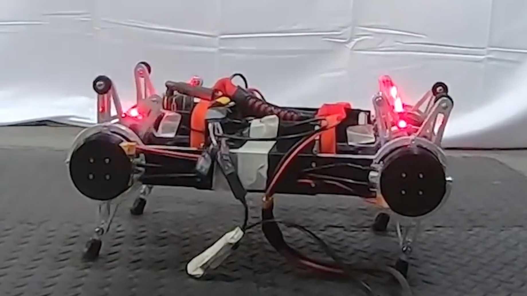 Robotik-Konferenz RSS: Roboter müssen noch viel lernen