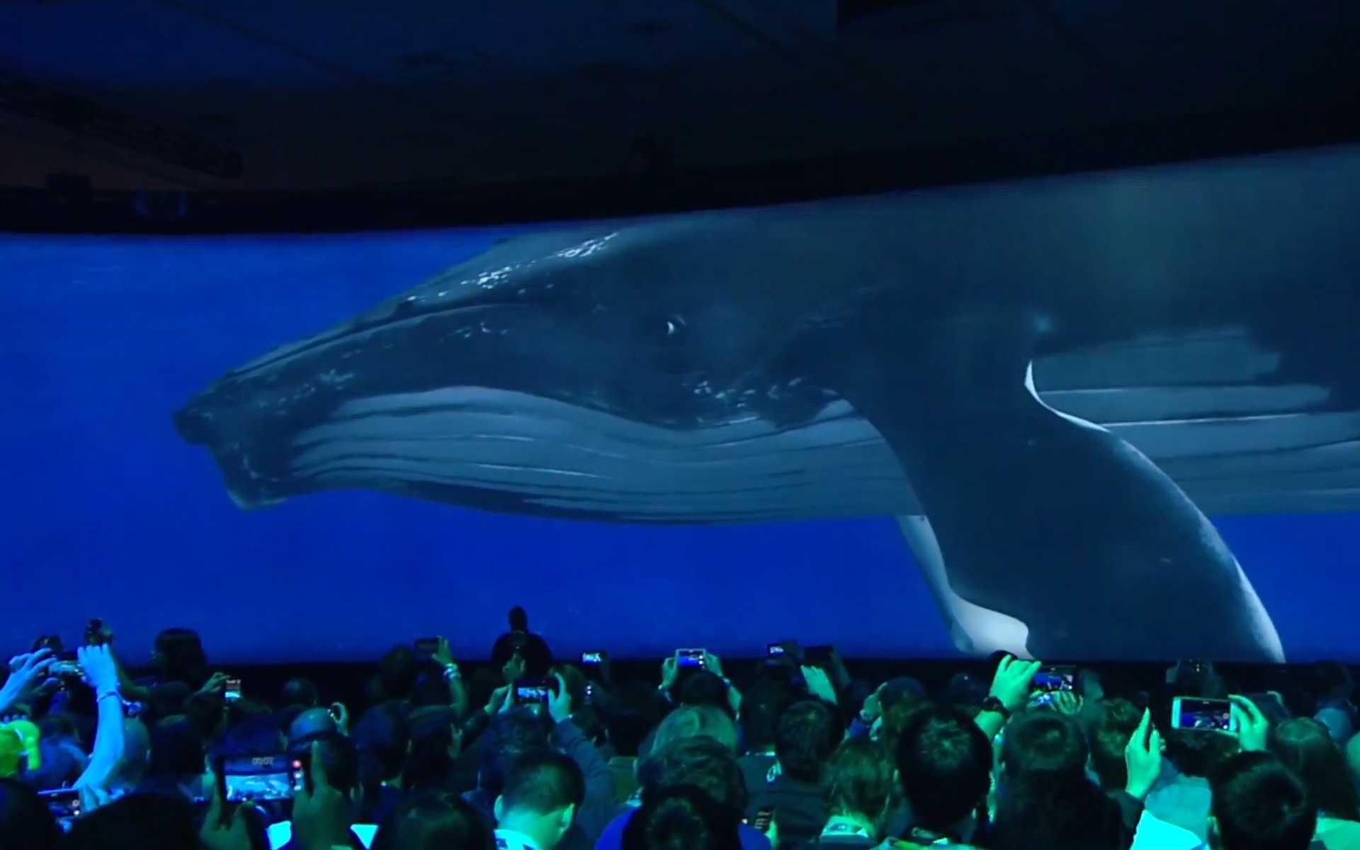 Über die 180-Grad-Leinwand im Moscone-Center lässt Google einen Wal schwimmen oder Mitarbeiter Pong spielen.
