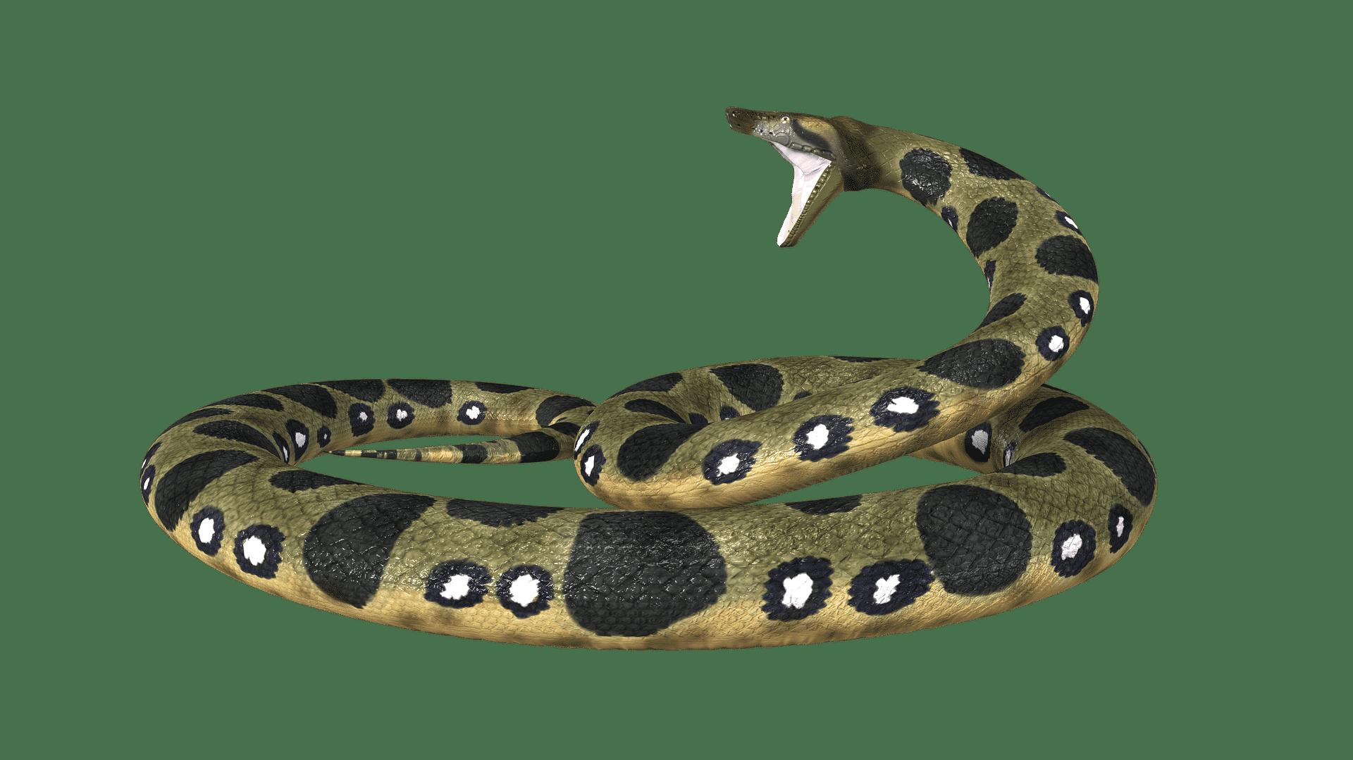 Anaconda Enterprise erweitert die GPU-Nutzung