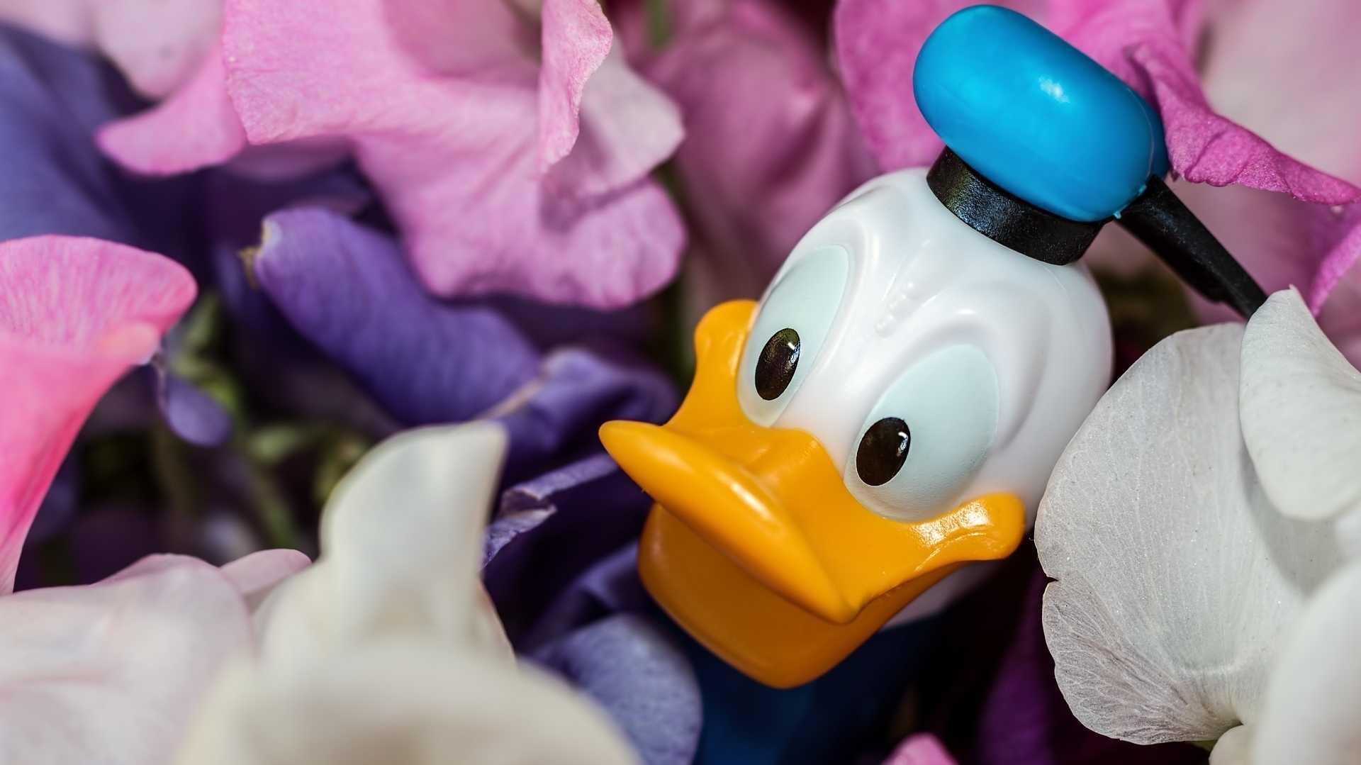 Kinohits füllen Disney die Kasse – Angriff auf Netflix und Co.