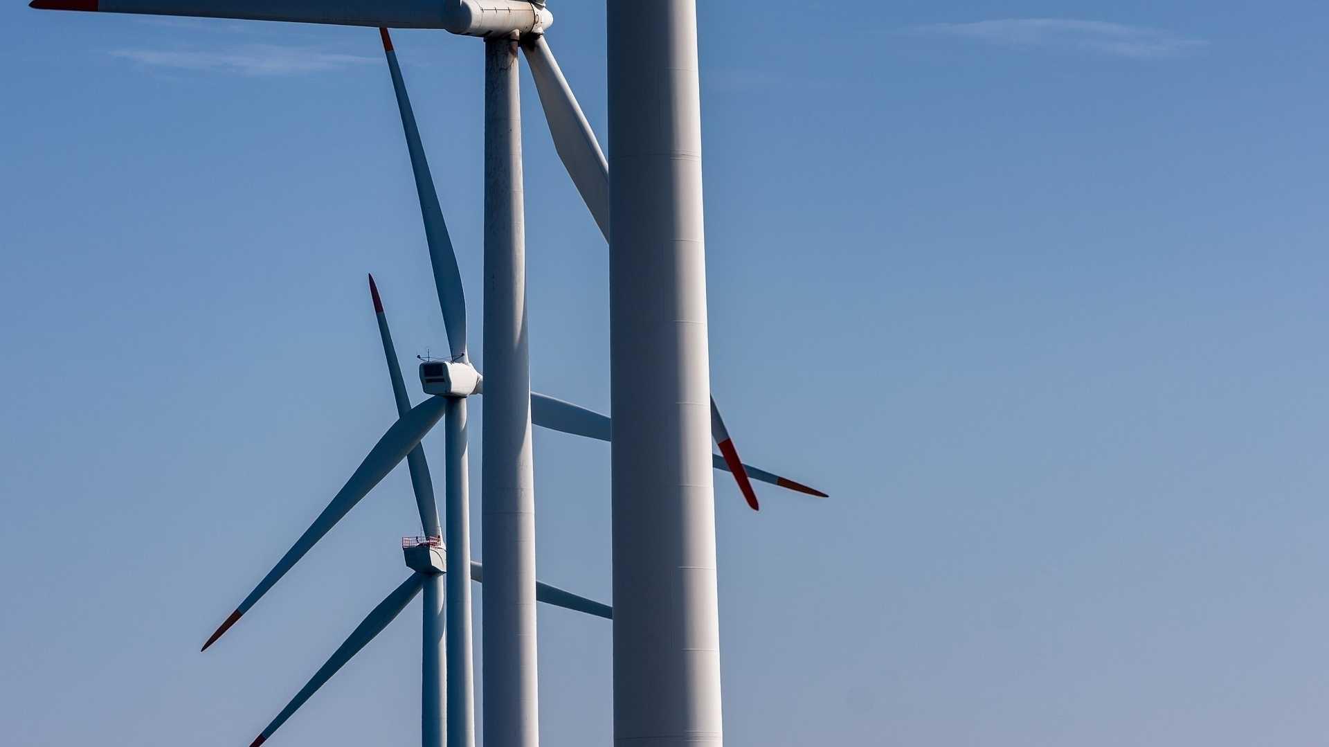Windenergieanlagen: WHO warnt vor gesundheitsschädlichen Lärm