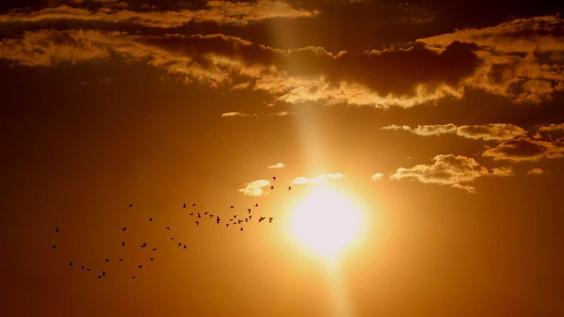 Geoengineering: Forscher wollen Weg zur Abkühlung der Erde bald testen