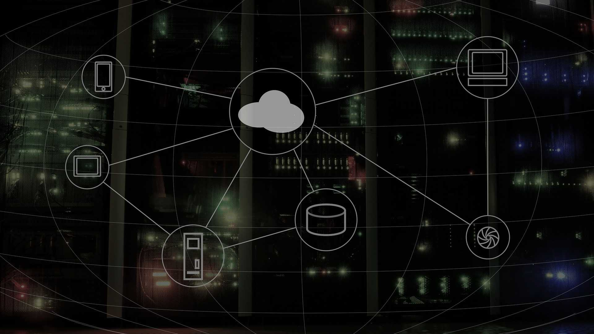 Microsoft schickt Bug-Jäger in die Cloud