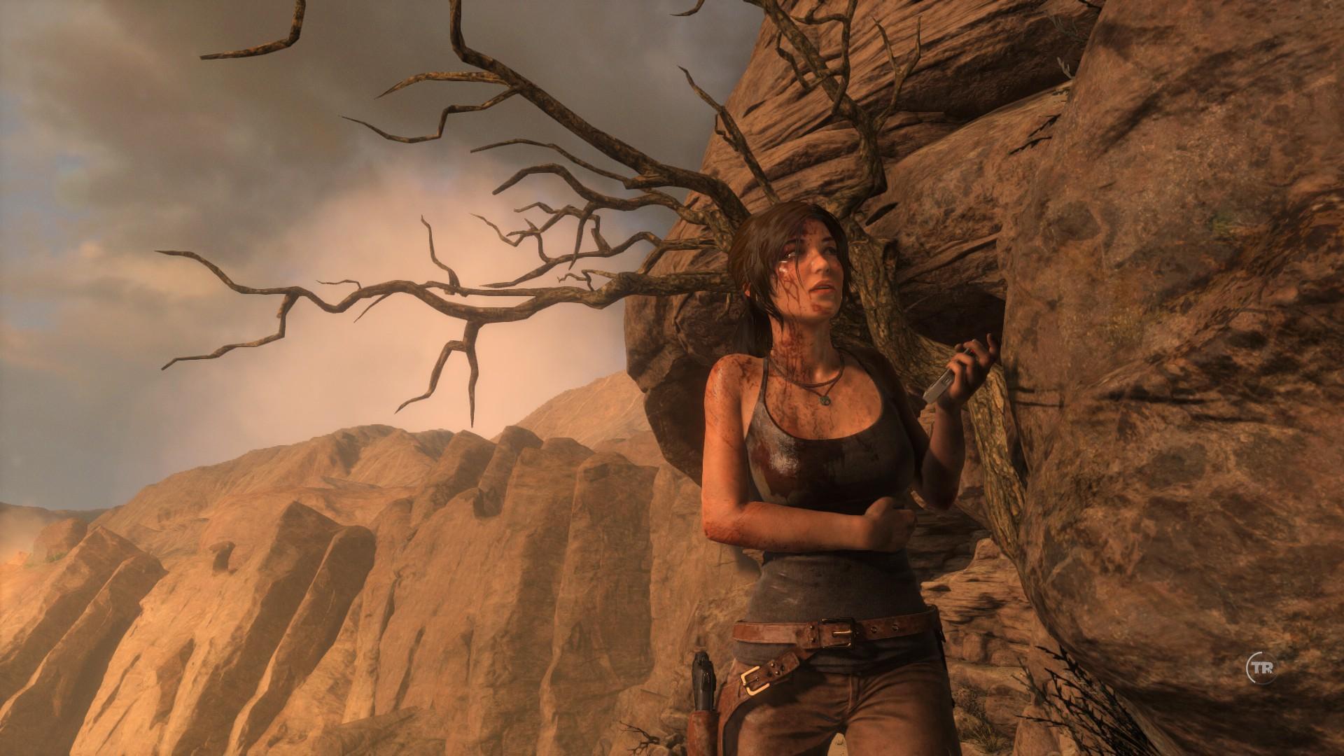 Mittlerweile erscheinen in kurzen Zeitabständen offenbar umgangene Varianten Denuvo-geschützter Spiele im Netz, etwa Rise of the Tomb Riader.