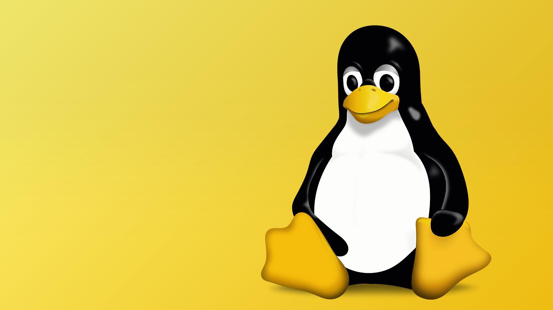 Linux Festplatte Formatieren