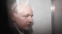 Zwischenbilanz und Ausblick: das Verfahren gegen Assange