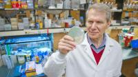 Ein Antibiotikum, das Resistenzen verhindert?