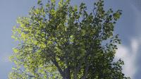 Unreal Engine 4.7: Fit für Virtual Reality