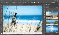 Der Agenturfotodienst Adobe Stock erhält nun von Adobe kuratierte Fotos.
