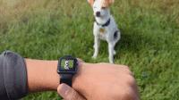 CMRA für Apple Watch