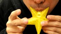 Die Häschen-Flöte aus dem 3D-Drucker