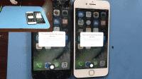 iPhone-Fingerabdrucksensor: Apple will Spezialmaschine für Reparatur bereitstellen