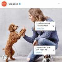 In der Instagram-App können die Nutzer nun die abgebildeten Sachen kaufen. (Der Hund ist leider unverkäuflich.)