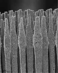 Beim Laden dehnt sich das Silizium um 400 Prozent aus, das empfindliche Material könnte dabei zerbrechen. Weitaus flexibler ist es in Form von Mikrodrähten.