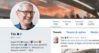 Das angepasste Profil des Apple-Chefs.