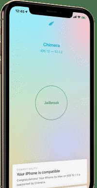 Der Jailbreak ist nur möglich, solange auf dem iPhone noch nicht iOS 12.2 (oder neuer) läuft.