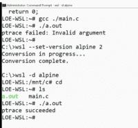 Eine bisher nicht unter WSL 1 lauffähige Linux-Anwendung läuft unter Alpine, nachdem die Distribution in WSL 2 konvertiert wurde