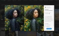 Lightroom CC hilft beim Einstieg mit interaktiven Tutorials.