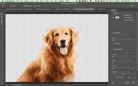 Photoshop CC wählt Motive nach einem Mausklick aus.