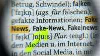 Fake News im Netz