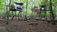 Hambacher Forst: Innenministerium bot RWE Polizeidaten zur Räumung an