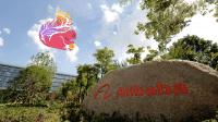 Alibaba Cloud veröffentlicht Algorithmusplattform Alink als Open Source