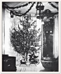 Zahlen, Bitte! 24. Dezember - Die Nacht der Weihnachtsbeleuchtung.