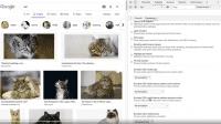 Hilfe bei Sehbehinderungen: Neue Chrome-Funktion für Entwickler