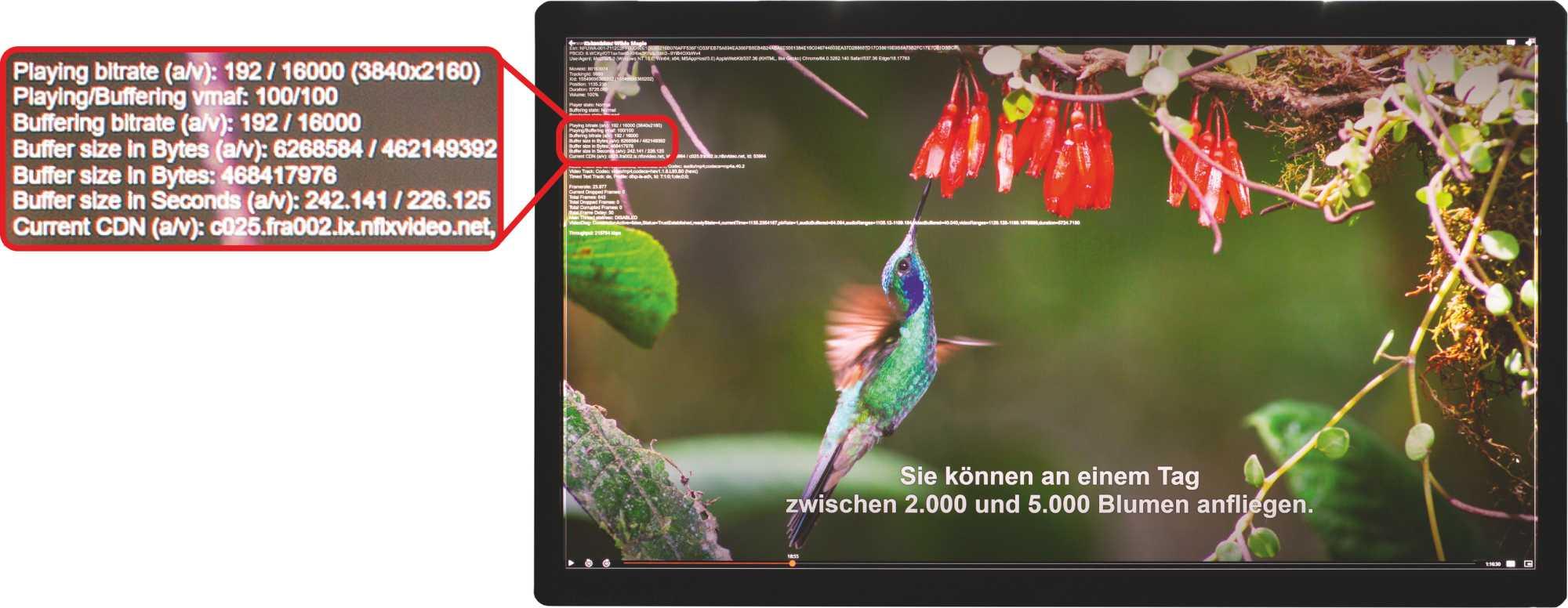 Mit der Tastenkombination Strg+Shift+Alt+D aktiviert man das Overlay für Netflix-Streams. Ab Abschnitt 4 werden Bild- und Bitraten sowie die Auflösung für den Video- und Audiostream ausgegeben.