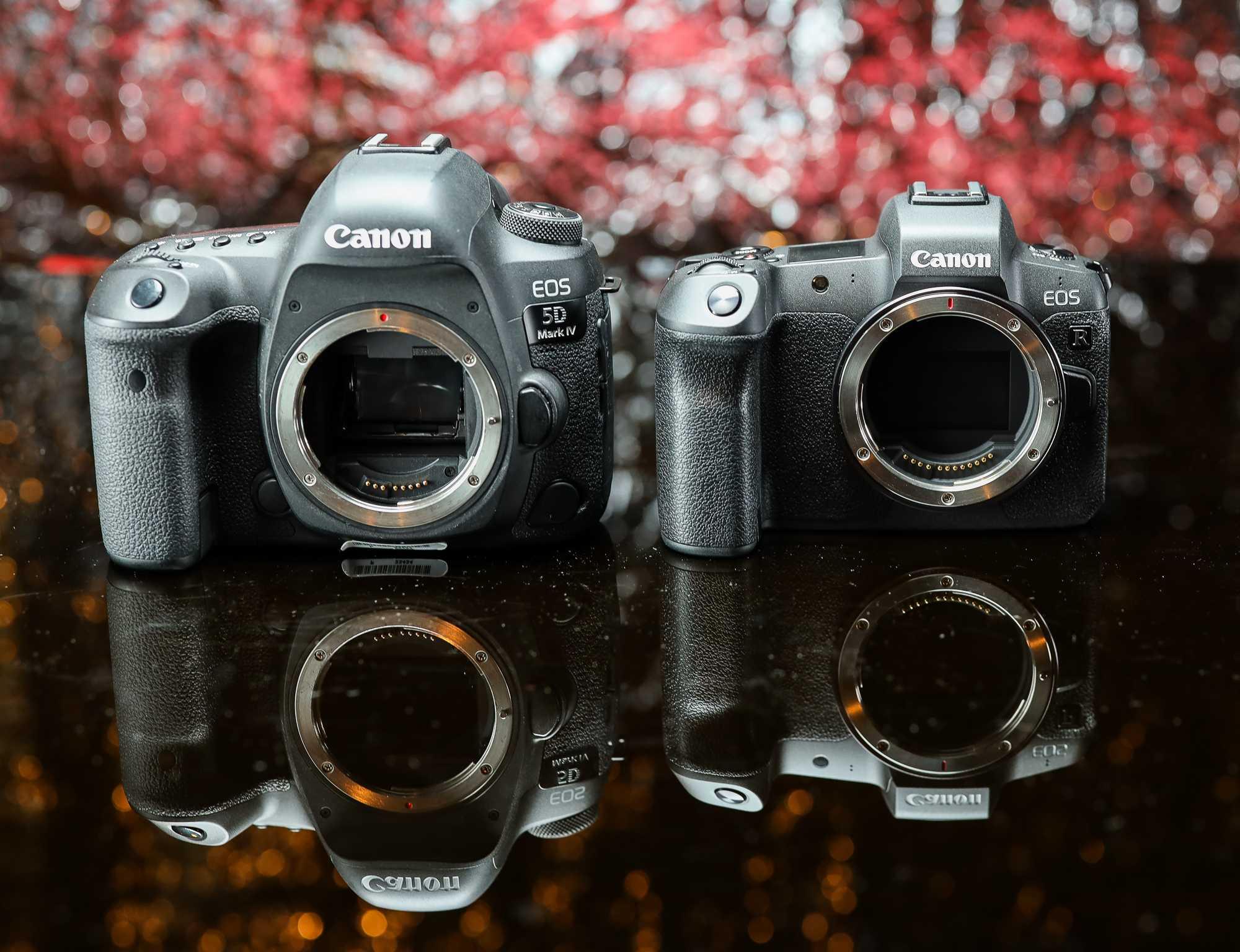 Canon EOS R vs 5D M IV