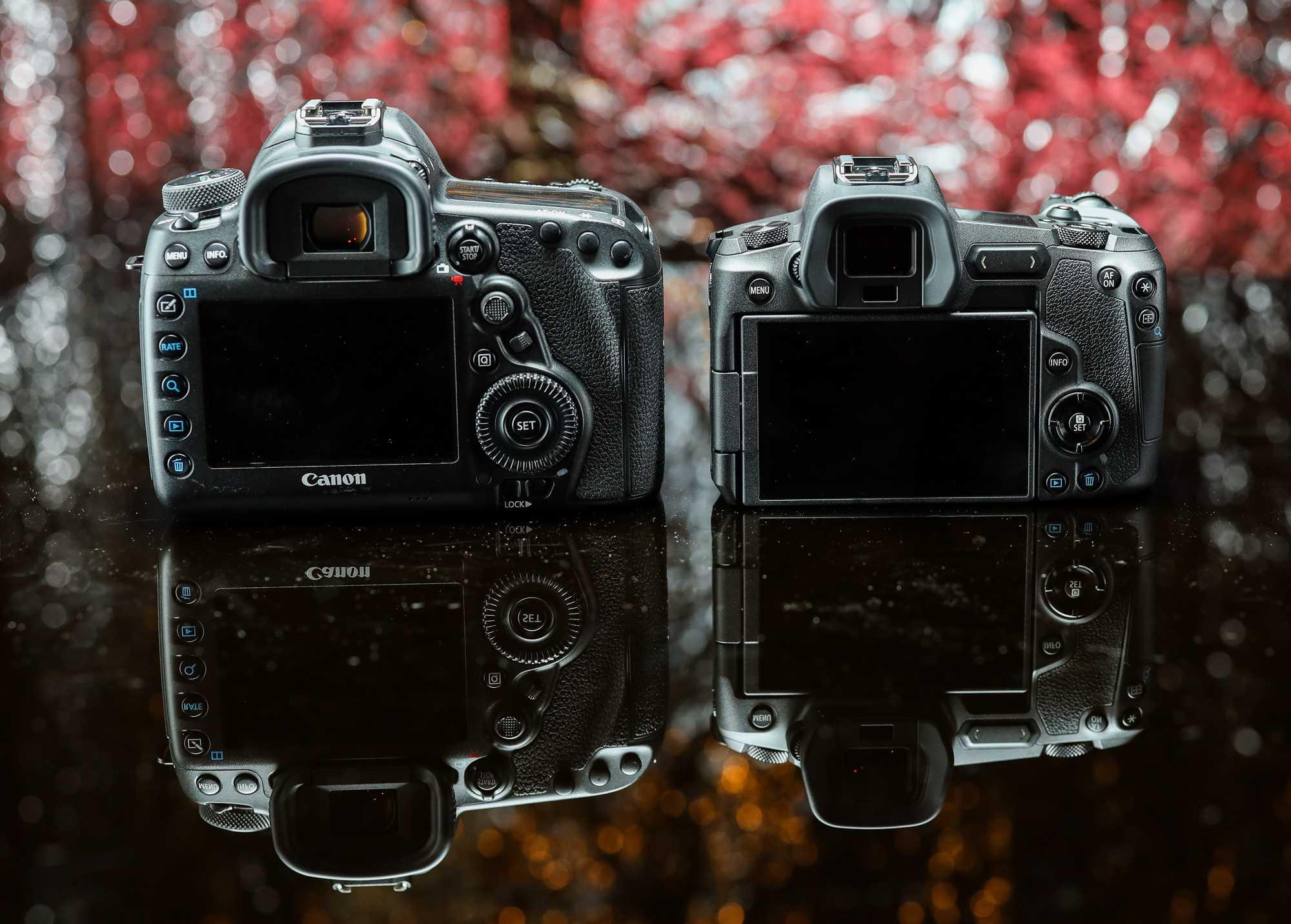 Rückseiten EOS R vs. 5D M4