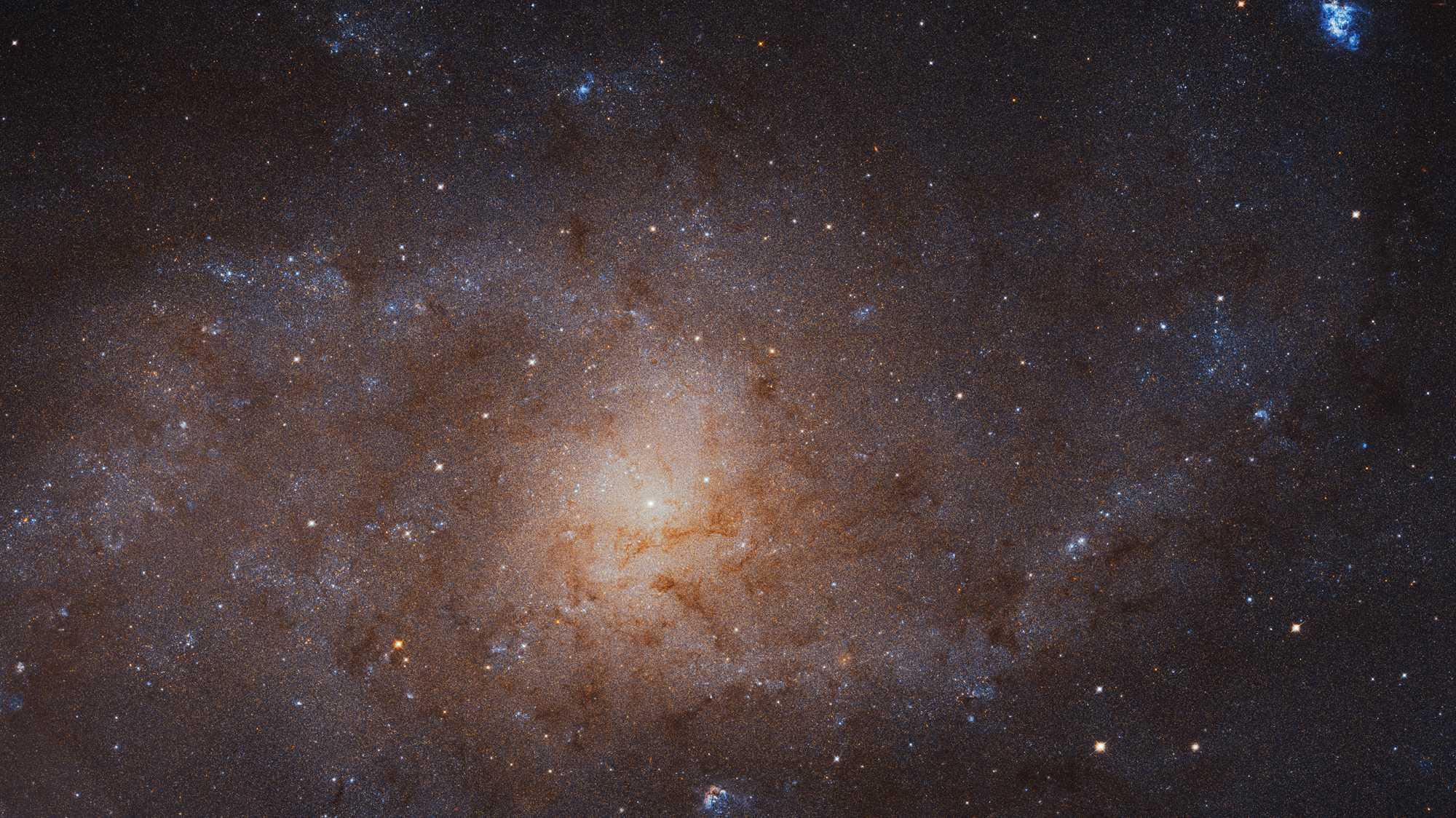 34.372 × 19.345 Pixel: Hubble macht schärfstes Foto der Dreiecksgalaxie