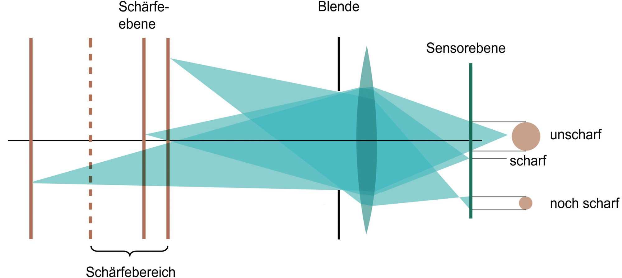 Objekte vor und hinter dem Fokuspunkt werden von Objektiv und Sensor nicht als scharfe Punkte, sondern als unscharfe Kreise ausgegeben. Sie bilde das Bokeh.