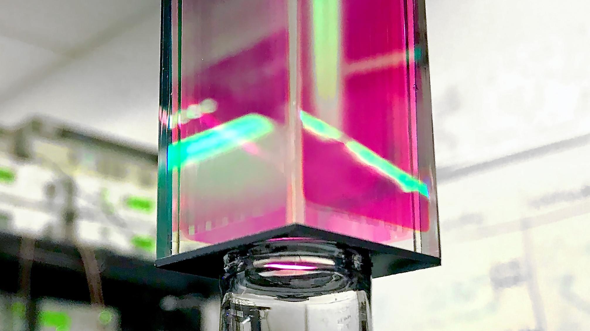 Bose-Einstein-Kondensat aus dem All