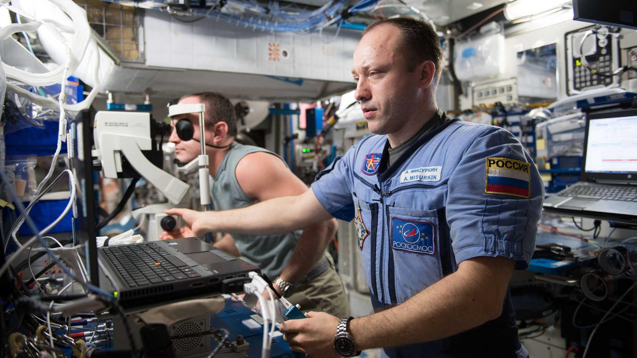 Bakterien auf Raumstation ISS ähnlich wie im Wohnzimmer