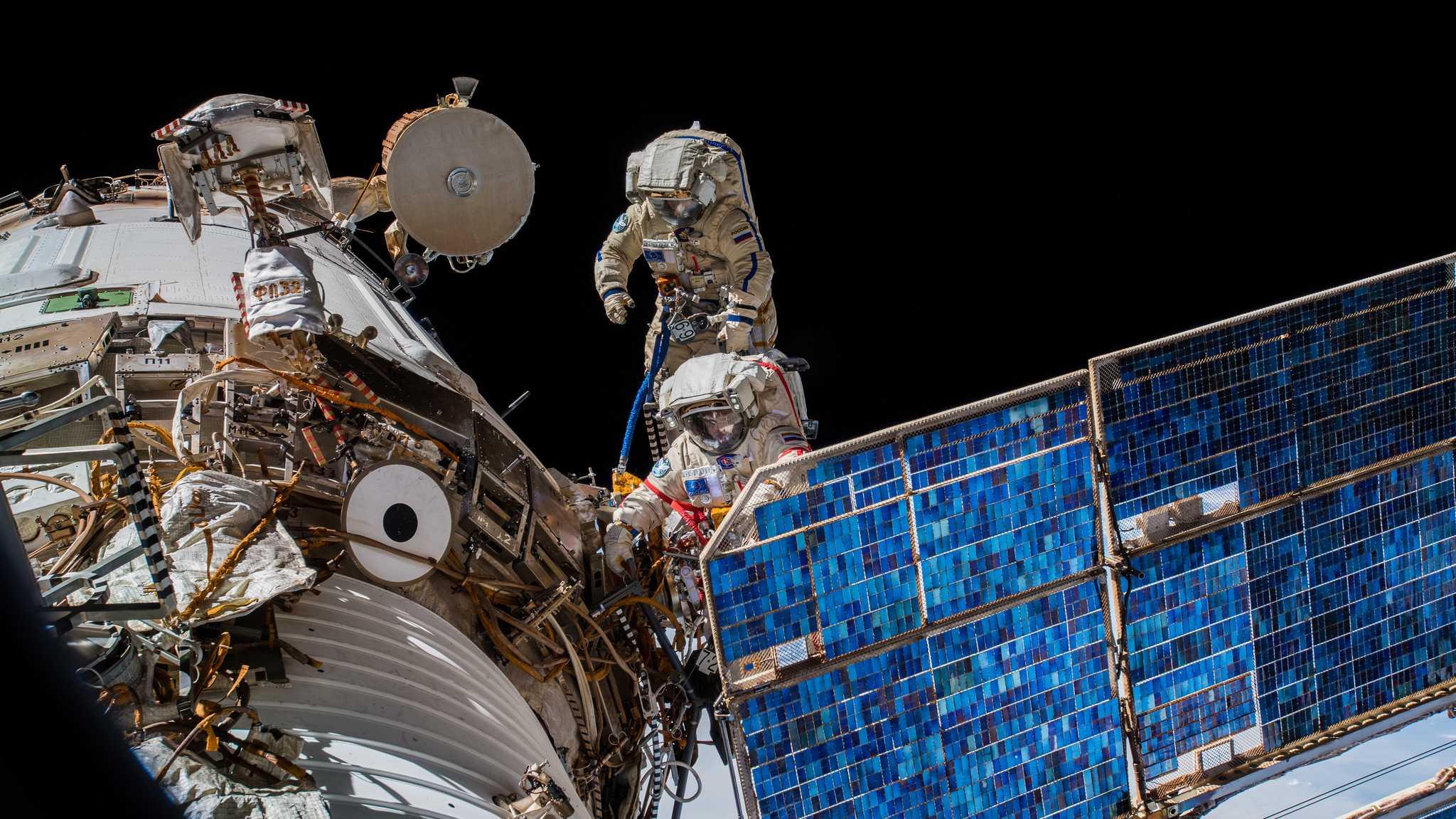 Antenne für Tierbeobachtung erfolgreich an ISS montiert