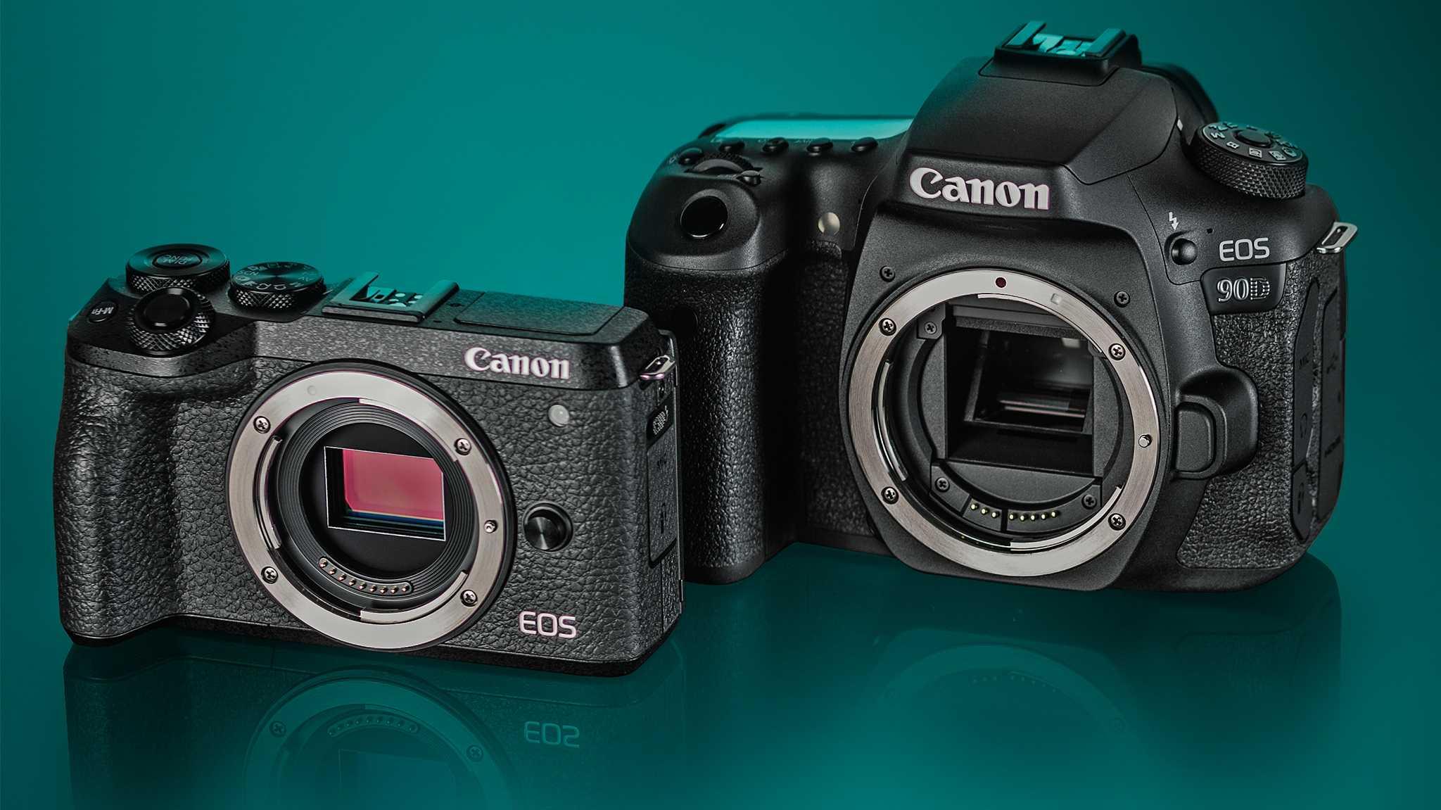 DSLR oder Spiegellose? Canon 90D und EOS M6 Mark II im Vergleichstest