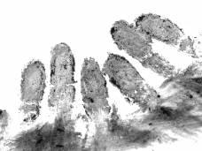 Bka Startet Online Abgleich Von Fingerabdrucken Mit Us Behorden