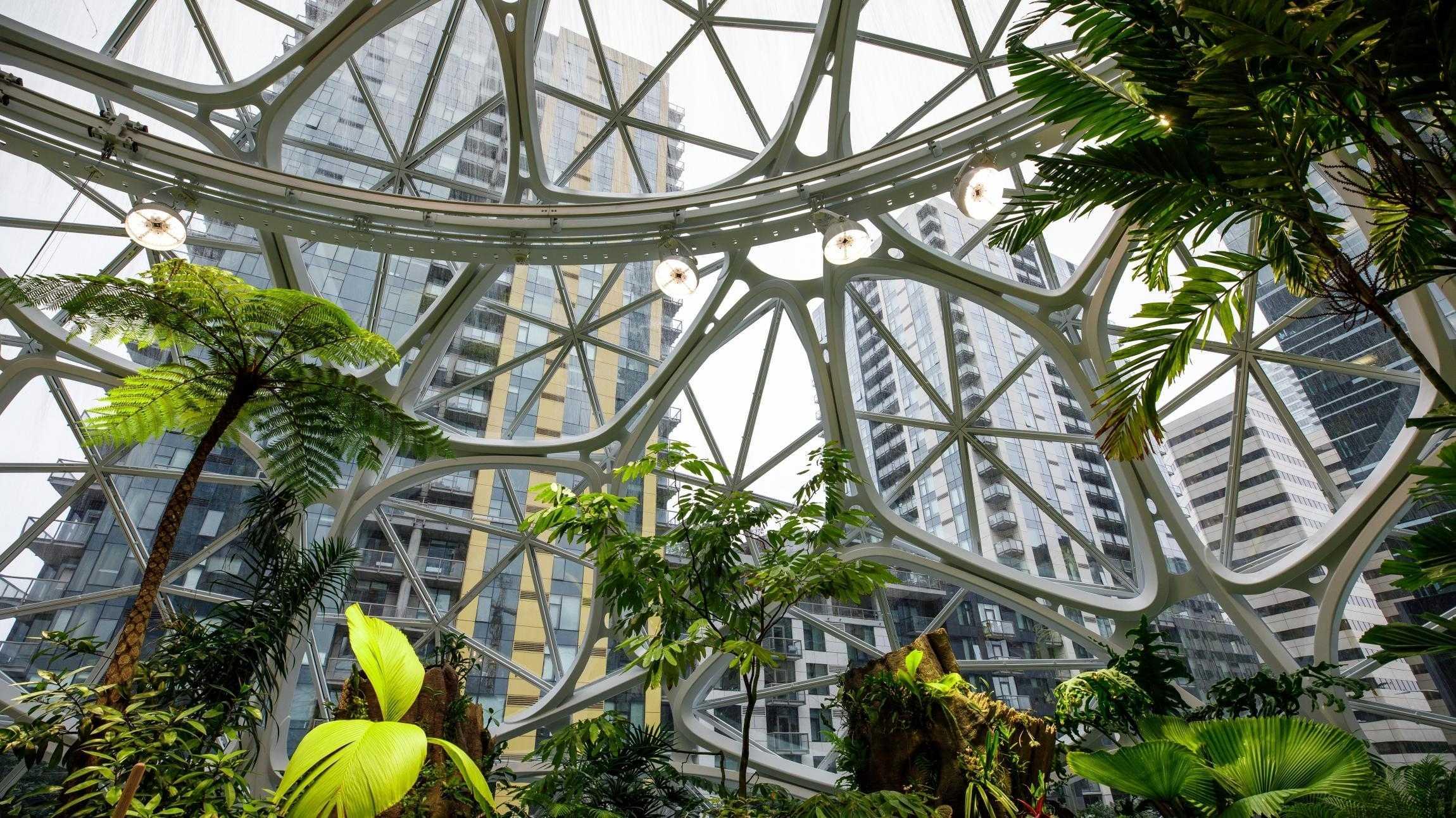Amazon plant nicht mehr neue Zentrale in New York