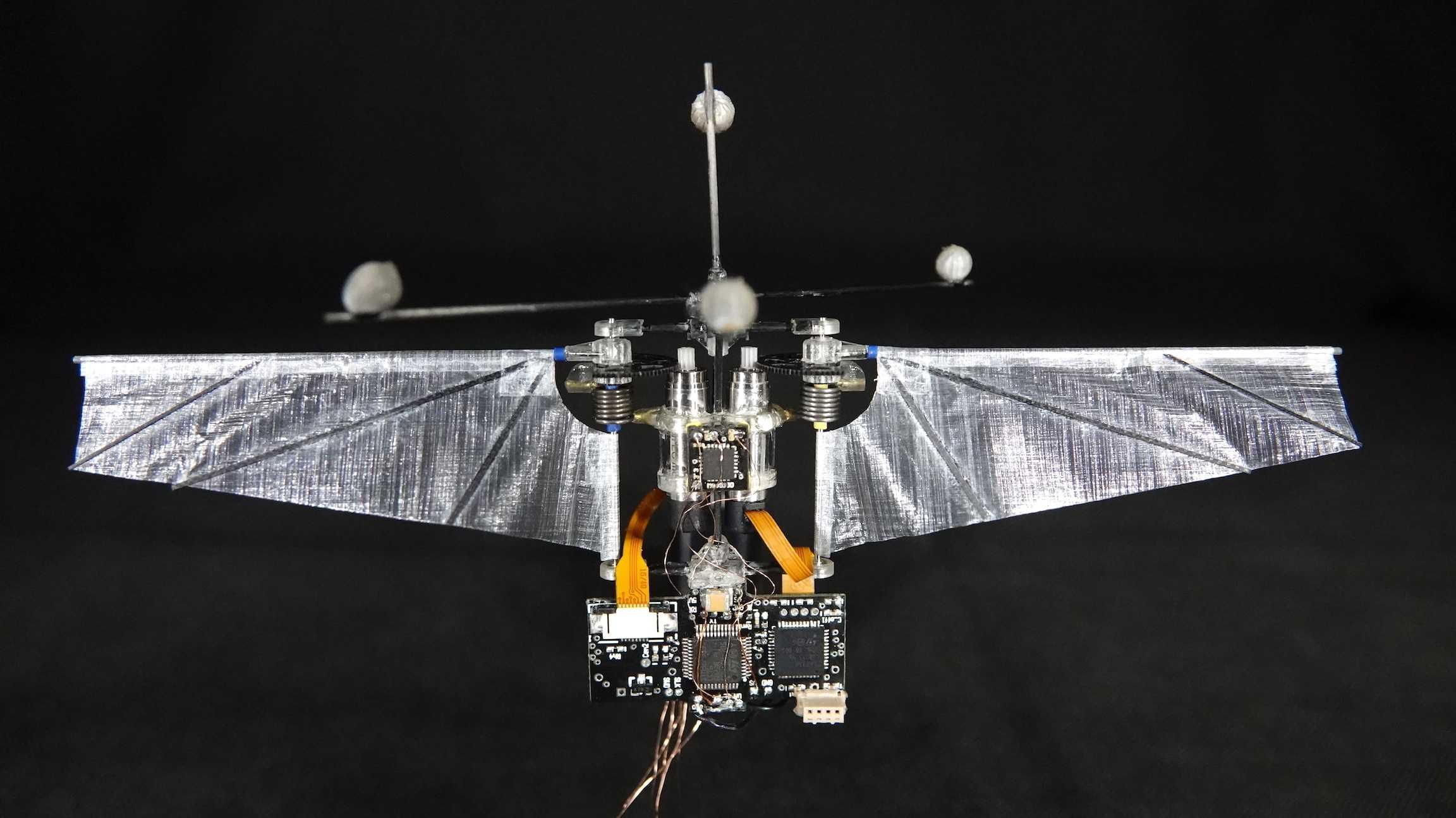 Kleiner Flugroboter: Manöver wie ein Kolibri