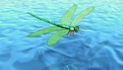 WildFly 9 CR1 und WildFly-Swarm veröffentlicht