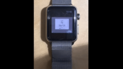 Mac OS auf der Apple Watch