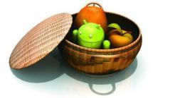 Pro und Kontra: Mobilmarkt-Monopol