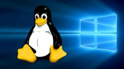 Windows 10 lernt Linux