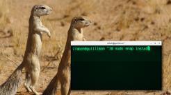 Snap: Ubuntus neue Pakete auf dem Desktop nicht sicherer