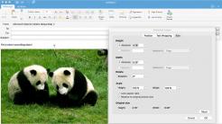 Outlook 2016 for Mac bekommt neuen Editor