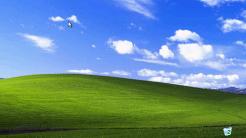 15 Jahre Windows XP