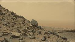 Astrobiologie: Bakterien könnten auf dem Mars überleben