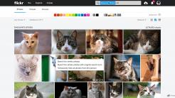 Flickr findet ab sofort ähnliche Bildmotive
